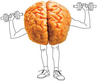 тренировка мозга и памяти
