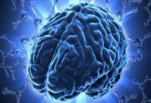 возможности мозга