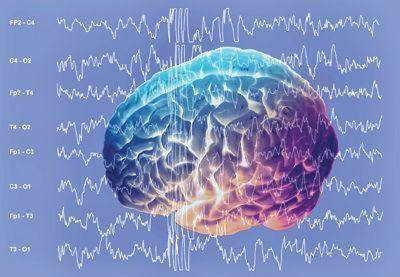Альфа ритм головного мозга