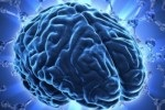 Смерть мозга