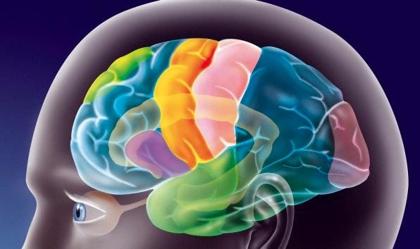 Изменения в коре головного мозга ирритативного характера
