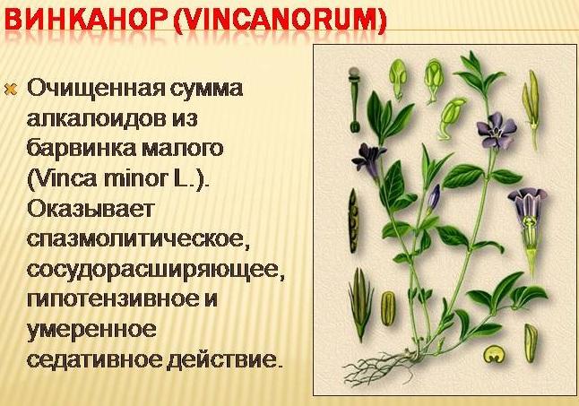 Препарат Винканор