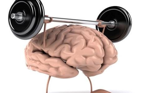 Тренировать память человека