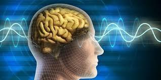 Лечение височной эпилепсии