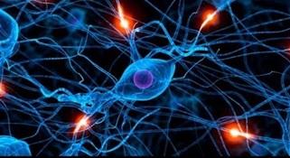 Микрополяризация головного мозга