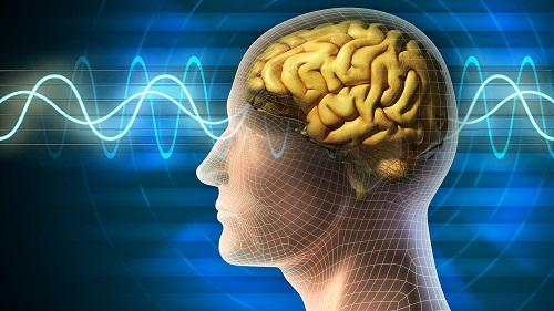 Для улучшения мозга