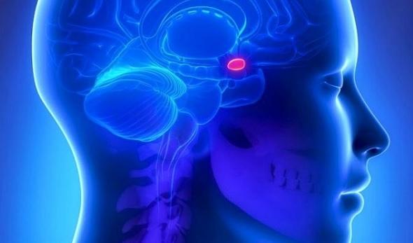 Аденома головного мозга