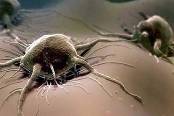 Можно ли вылечиться от рака
