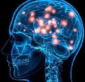 Эпилептическое поражение