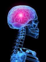 Токсоплазмоз головного мозга