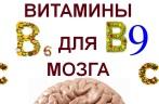 Витамины для сосудов головного мозга
