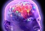 Височная и лобная эпилепсия