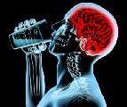 Как алкоголь влияет на мозг