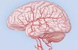 Симптомы гипертензивной энцефалопатии