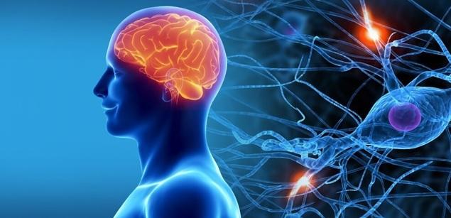 Нейродегенеративные заболевания ЦНС